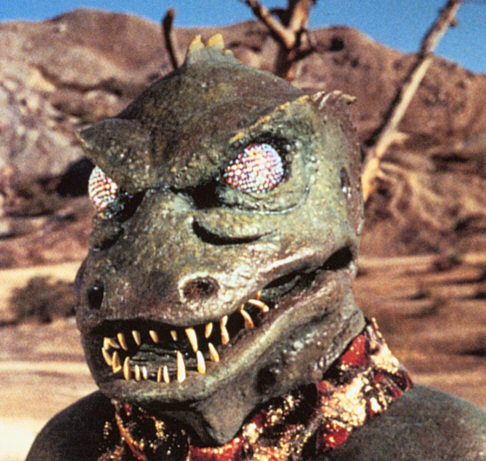 lizard people Granted, the lizards-in-people-suits theory is one of the less popular in the nation  according to the same poll, 21 million believe the moon.